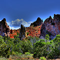 Garden Of The Gods by David Patterson