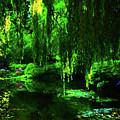 Garden Pond Of Zen And Tranquility  by Ola Allen