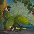 Garden Parrots by Anita Wann
