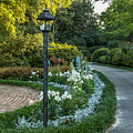 Garden Path #1 by Larry Palmer