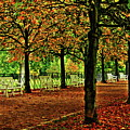 Garden Path, Schloss Biebrich by Daniel Koglin