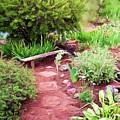 Garden Path by Shelley Bain