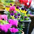 Garden Plants by Zahra Majid