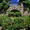 Garden Pond by Mark Miller