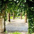 Garden Ruins by Greg Fortier