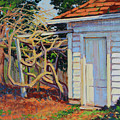 Garden Shed by Keith Burgess