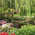 Garden Splendor by Carol Groenen