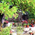 Garden Terrace by Desiree Paquette