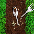 Garden Tools On Earth by Sandra Cunningham