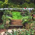 Garden Trellis by Patti Whitten