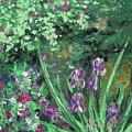 Garden Walk by Jeni Reynolds