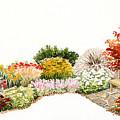 Garden Wild Flowers Watercolor by Karla Beatty