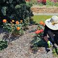 Gardener Pulling Weeds  by Janette Boyd