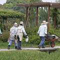 Gardeners by Masami Iida