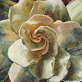 Gardenia by Billie Colson