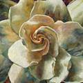 Gardenia by Billie Colson