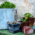 Gardening Pots And Small Shovel Against Stone Wall In Primosten, Croatia by Global Light Photography - Nicole Leffer