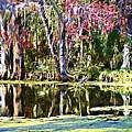 Gardens by Donna Bentley