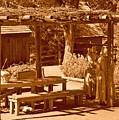 Gardiner Cabin - Circa 1800's by Dennis Hammer