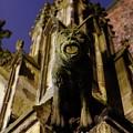 Gargoyle At The Dom Church In Utrecht In The Evening 188 by Merijn Van der Vliet
