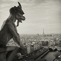 Gargoyle Of Notre Dame by Zeb Andrews