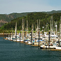 Garibaldi Oregon Marina by Renee Hong