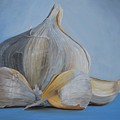 Garlic IIi by Emily Page