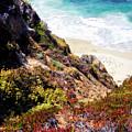 Garrapata Highlands 3 by Alan Hausenflock