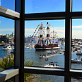 Gasparilla Through The Looking Glass by David Lee Thompson