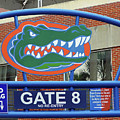 Gate 8 At The Swamp by D Hackett