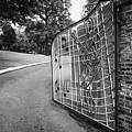Gate And Driveway Of Graceland Elvis Presleys Mansion Home In Memphis Tennessee Usa by Joe Fox