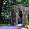 Gate At Cong Abbey Cong Ireland by Teresa Mucha