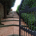Gate To Castello Vichiamaggio by Gary Karlsen