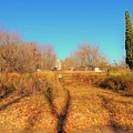Gateway To A No Trespassing Farm by Curtis Tilleraas
