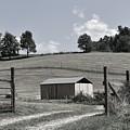 Gateway To North Carolina  by Lisa Kleiner