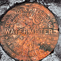 New Orleans Water Meter Cover 9 Months After Katrina by Pringle Teetor