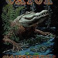Gator Country by JQ Licensing