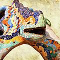 Gaudi Salamander by Weston Westmoreland