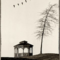 Gazebo And Geese by Mike Nellums