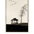 Gazebo And Geese Poster by Mike Nellums