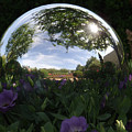 Gazing Ball by William Moore