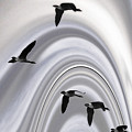 Geese In A Halo by Wayne King