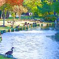 Geese In Pond 3 by Jeelan Clark