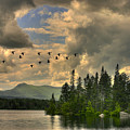 Geese Over Jericho Lake by Wayne King