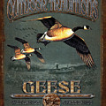 Geese Traditions by JQ Licensing