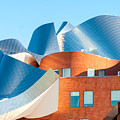 Gehry Architecture by Kenneth Sponsler