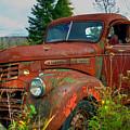 General Motors Truck by Alana Ranney