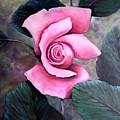 Generational Rose by Cynara Shelton