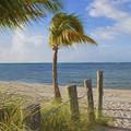 Gentle Breeze At The Beach by Kim Hojnacki