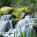 Gentle Stream by Carlo Caballero